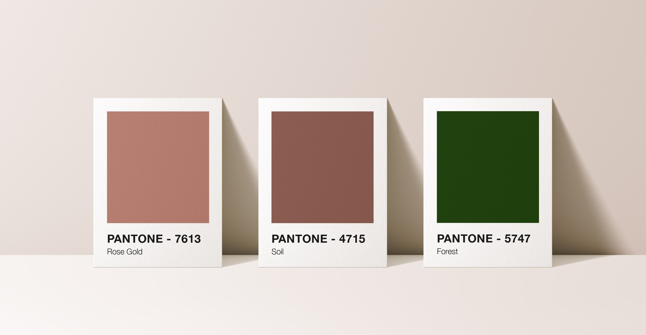 vine and co brand colours